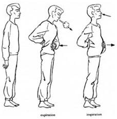 respiration-abdominale